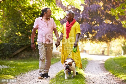 874818944 istock photo Senior Couple Walking With Pet Bulldog In Countryside 874818568