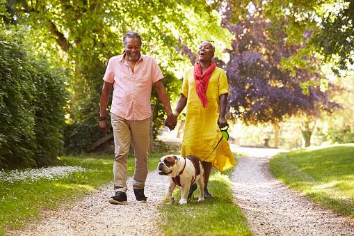Senior Couple Walking With Pet Bulldog In Countryside