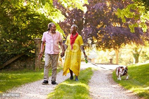 874818944 istock photo Senior Couple Walking With Pet Bulldog In Countryside 874819240