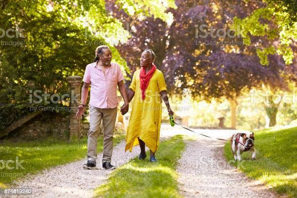 Senior couple walking with pet bulldog in countryside picture id874819240?b=1&k=6&m=874819240&s=612x612&h=jnm1aaazf0fuz6wvjv2k clk2a8po95fvqdyr0pkn3o=