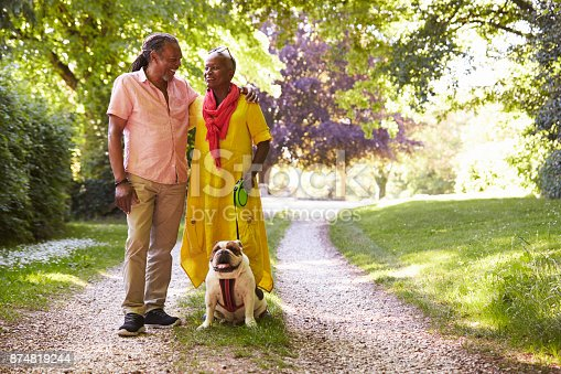 874818944 istock photo Senior Couple Walking With Pet Bulldog In Countryside 874819244