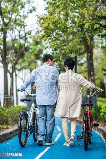 istock Senior couple with bicycles in the park. 1153653948