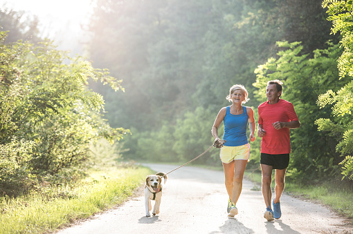 Senior couple with dog running in green sunny nature