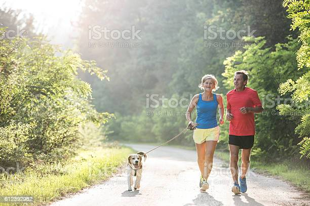 Senior couple with dog running in green sunny nature picture id612392982?b=1&k=6&m=612392982&s=612x612&h=tcuta2  bo6p2lmnk8i3yma50 vgwwmn 00cpgffjha=