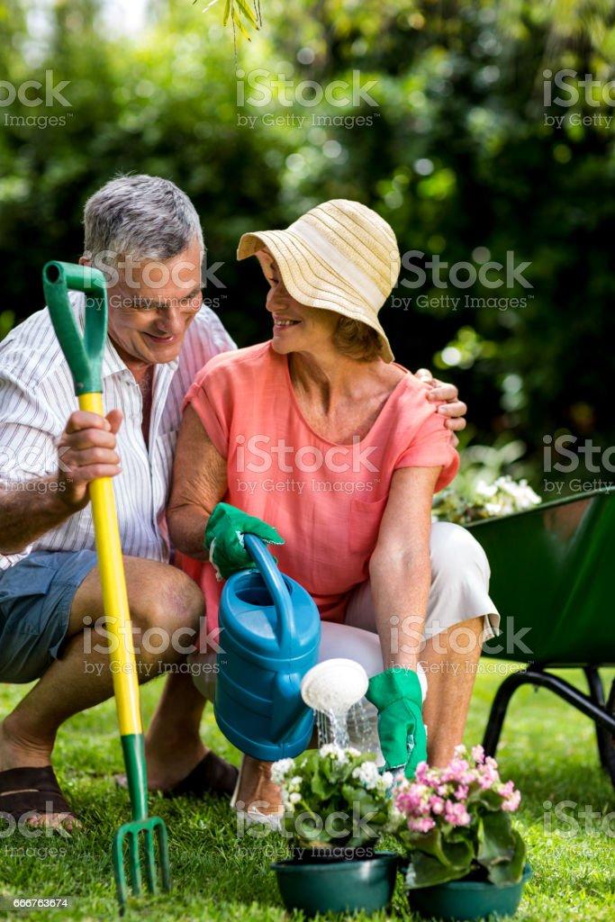 Senior couple with gardening equipment at yard foto stock royalty-free