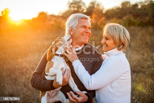 istock Senior couple with their puppy 186762864
