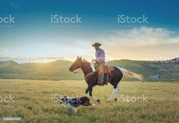 Senior cowboy horseback riding picture id1050000340?b=1&k=6&m=1050000340&s=612x612&h=mnoln0yvtv 9hm9slnekcreeb4twttdlptztrbhzky4=