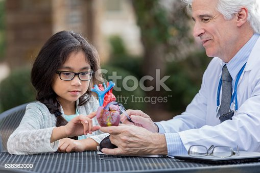 istock Senior doctor talks with little girl about human heart 636362000