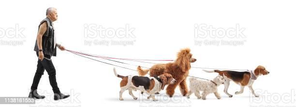 Senior dog walker in leather vest with four dogs picture id1138161553?b=1&k=6&m=1138161553&s=612x612&h=afy5othk1y bz2zwynlsipmy9zrhrjcu70a  o6fhga=