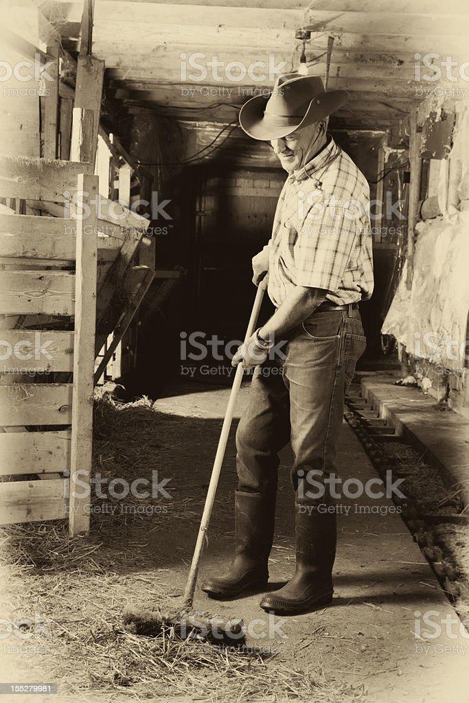 Senior farmer cleaning his barn royalty-free stock photo