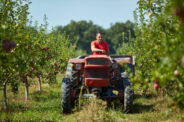 senior boer zijn trekker rijden - krachtapparatuur stockfoto's en -beelden