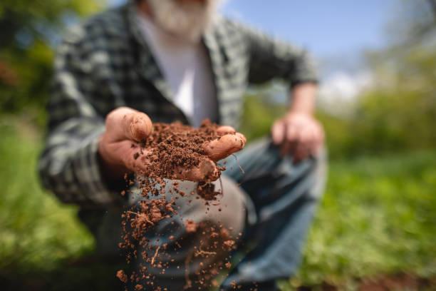 kıdemli çiftçi onun çiftlikte dünya inceleyerek - toz stok fotoğraflar ve resimler