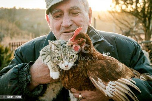 Bulgaria, Serbia, 70-79 Years, Active Seniors, Adult