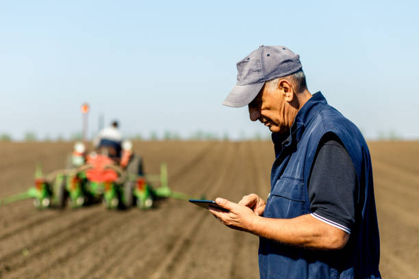senior bauer im feld prüfung-aussaat und hält in seinen händen tablet. - farmer stock-fotos und bilder