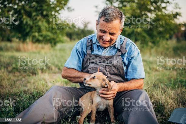 Senior farmer playing with puppy picture id1188211668?b=1&k=6&m=1188211668&s=612x612&h=toh th7ijclimqpzja15uxpb77oikq7d9q qt6mmyg8=