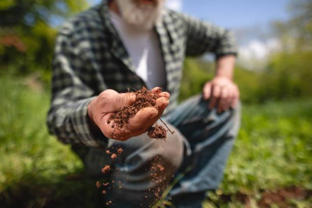 Oberer Landwirt zeigt dem Kameramann, wie fruchtbarer Boden aussieht – Foto
