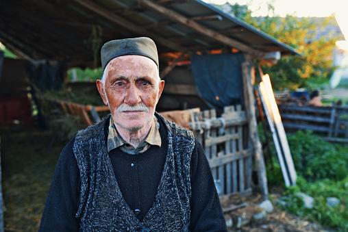 창 밖에 서 있는 수석 농부 80-89세에 대한 스톡 사진 및 기타 이미지