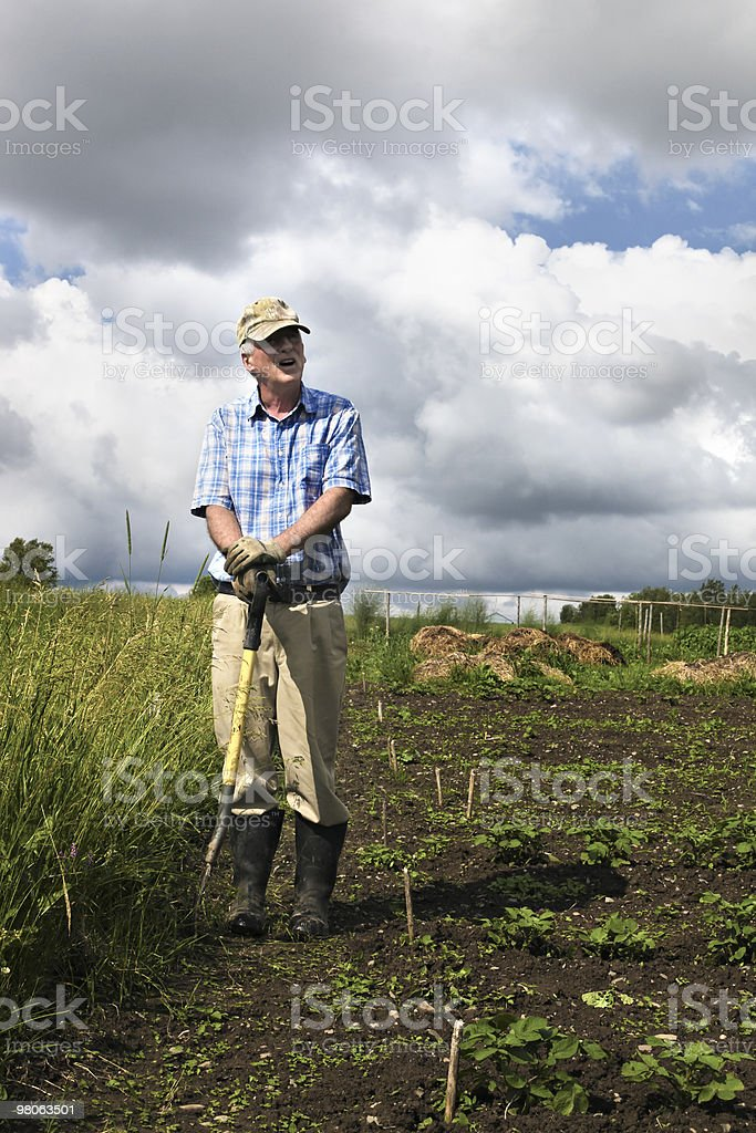 Senior farmer talking and holding pitchfork royalty-free stock photo