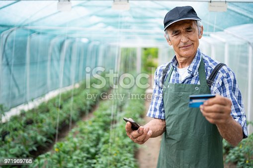 Senior farmer using credit card and smart phone in greenhouse.
