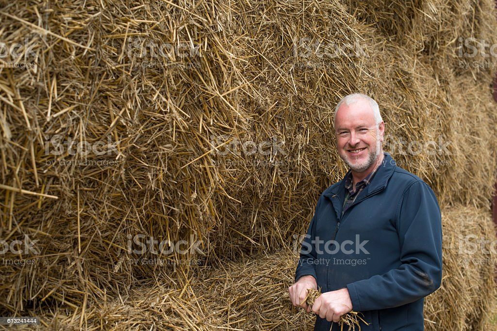 Senior farmer with his crop of straw royalty-free stock photo
