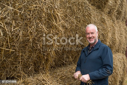 Senior Farmer With His Crop Of Straw Stock Photo & More Pictures of 50-59 Years