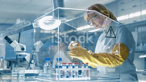 Senior Female Epidemiologist Works with Samples in Isolation Glove Box. She's in a Modern, Busy Laboratory Equipped with State of the Art Technology.