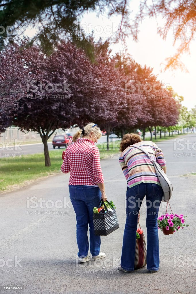 Senior female friends grocery shopping royalty-free stock photo