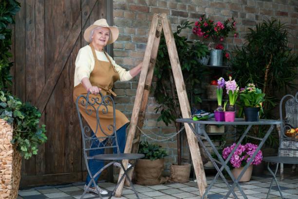 Senior female gardener working in the backyard near the garden stock photo
