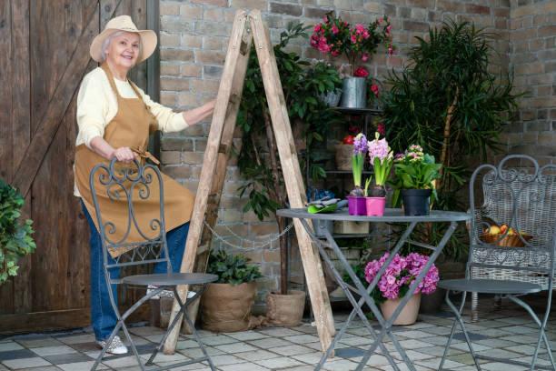 Senior female gardener working in the backyard near the house stock photo