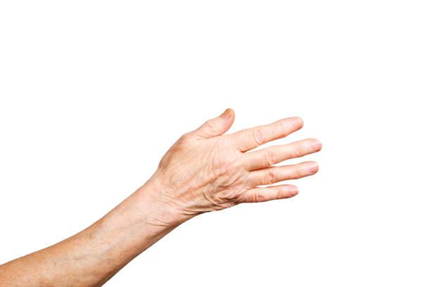 lenguaje del gesto femenino senior, manos signos aislados en fondo blanco sólido. mujer vieja en sus años setenta / ochenta mostrando antebrazos de brazos. - brazo fotografías e imágenes de stock