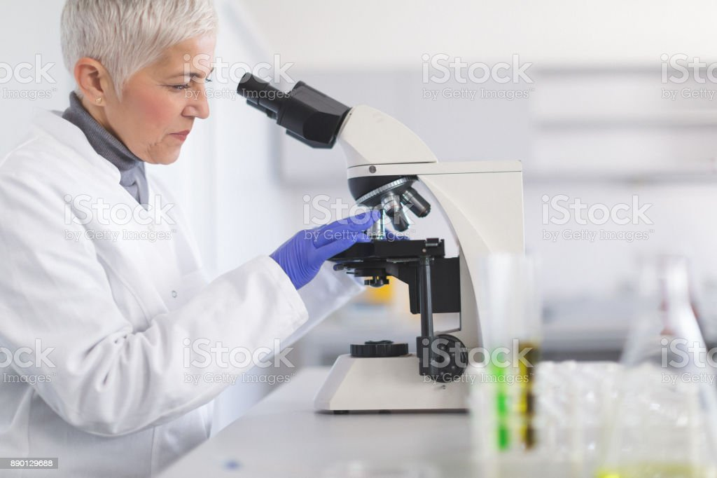 Senior female scientist working in laboratory stock photo