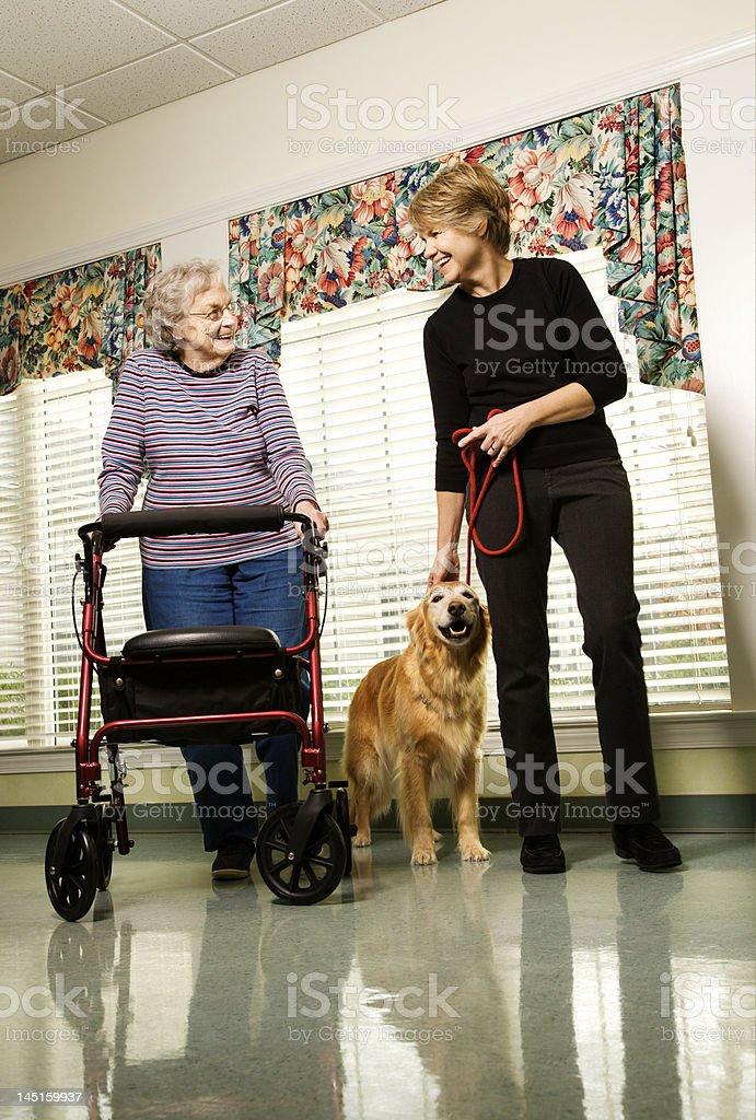 Senior female with daughter walking dog. royalty-free stock photo