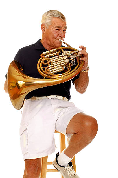 Top 60 French Horn Stock Photos, Pictures, and Images - iStock