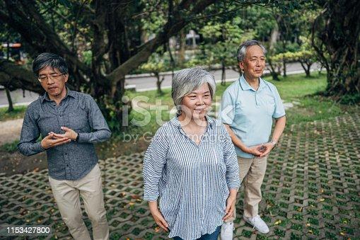 istock Senior friends exercising in park 1153427800
