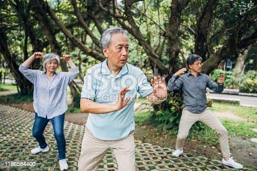 646614234 istock photo Senior friends exercising in park 1166584400