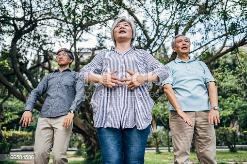 istock Senior friends exercising together in park 1166584586