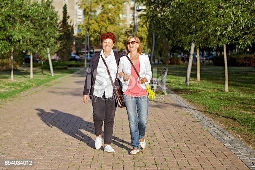 istock Senior friends walking in park 854034012