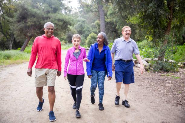 senior vänner walking på forest trail - senior walking bildbanksfoton och bilder