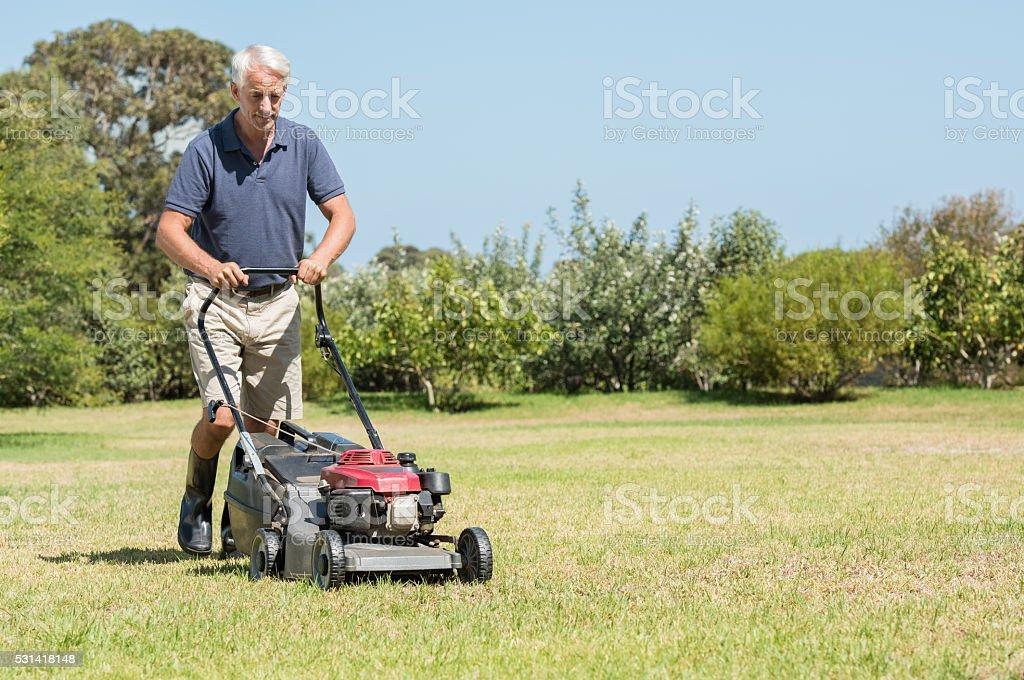 Senior gardener mowing stock photo