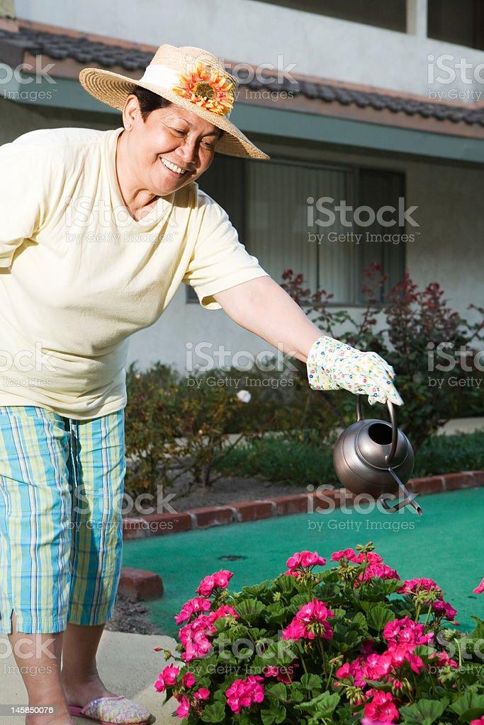 Senior gardener royalty-free stock photo