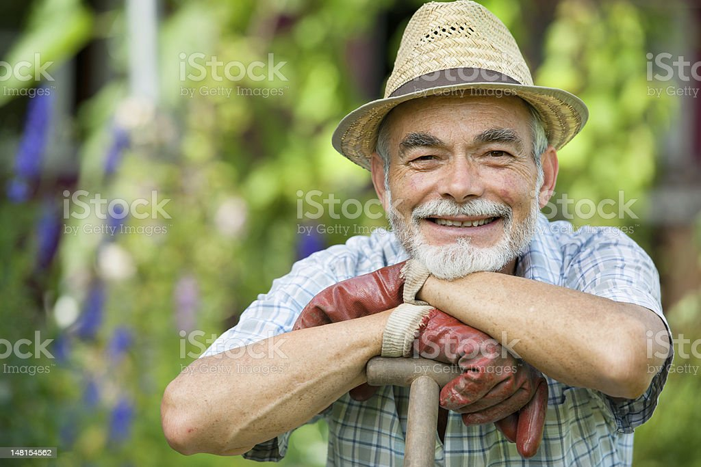 Senior gardener with a spade stock photo