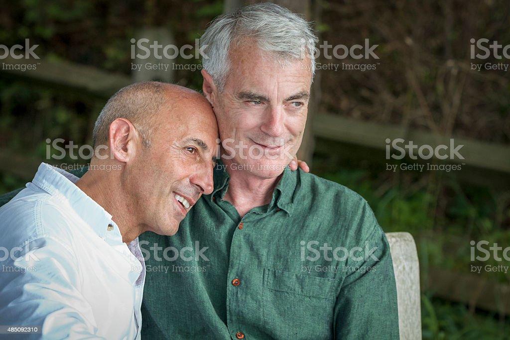 Senior Gay Male Couple at Seashore, Pensive and Planning Future stock photo