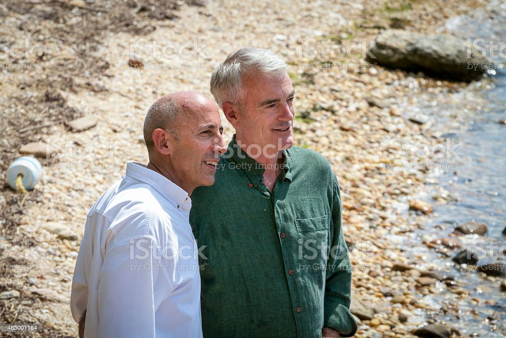 Senior Gay Male Couple at Seashore, Thoughtful and Planning Future stock photo