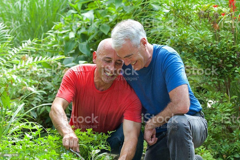 Senior Gay Male Couple Smiling and Gardening stock photo