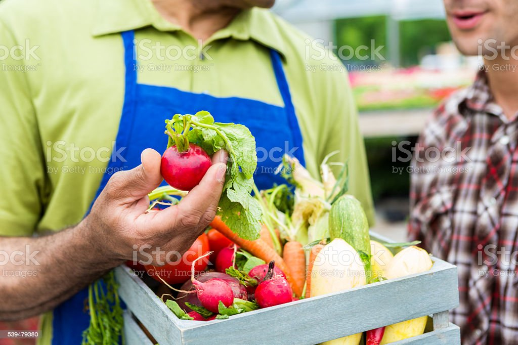 Senior grocer selling produce at farmers market stock photo