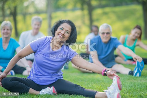 istock Senior Group Exercises in the Park 801309758