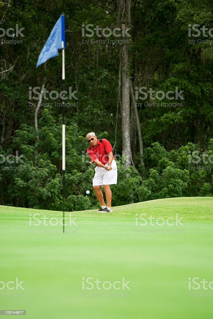 Senior hits chip shot on to the Green royalty-free stock photo