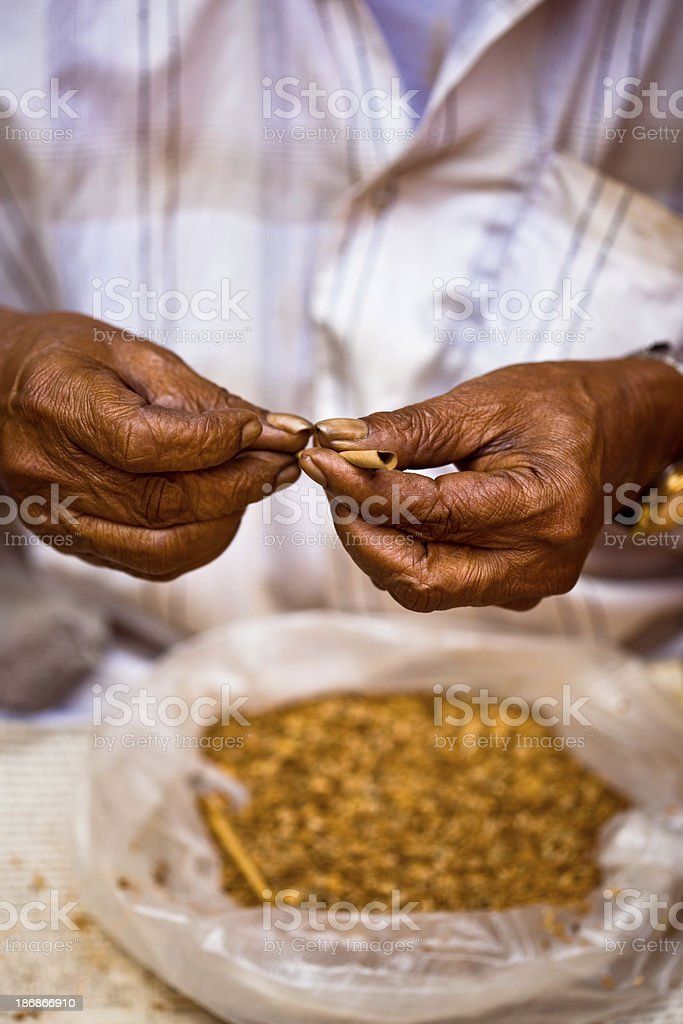 Senior Indian rolling biddies Close-up of senior man's hands rolling biddies - small cigarette made in India. Active Lifestyle Stock Photo