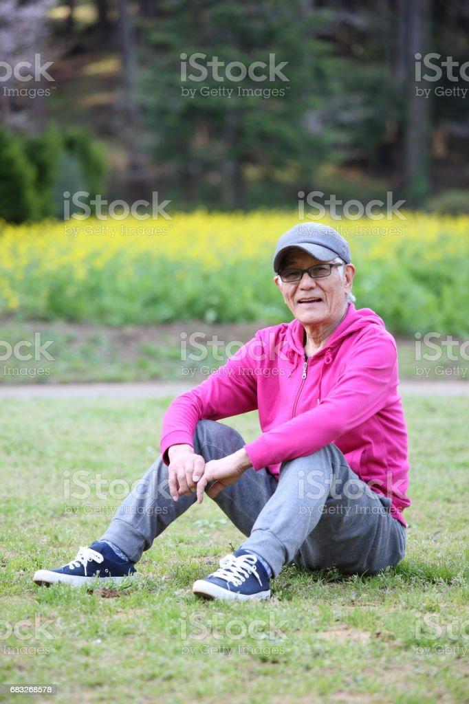 고위 일본 남자는 잔디밭에 앉아 royalty-free 스톡 사진