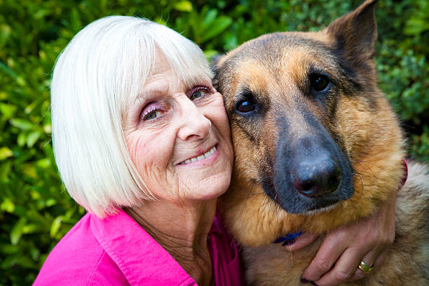 Senior lady holds her best friend stock photo